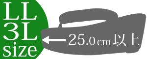 LLサイズ・3Lサイズ(25.0cm以上)