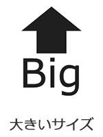 大きいサイズ